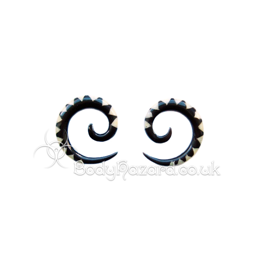 Pair of Buffalo Horn Spirals with Bone Inlay